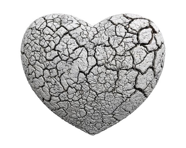 heart-1463424_640