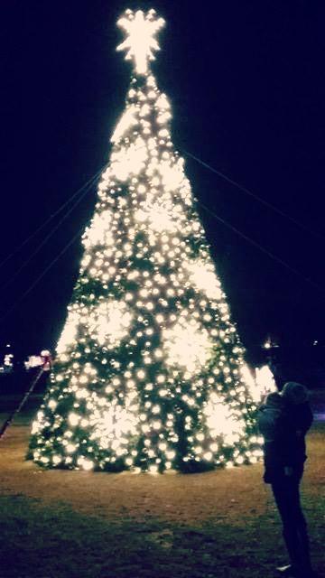christmastreeedited1